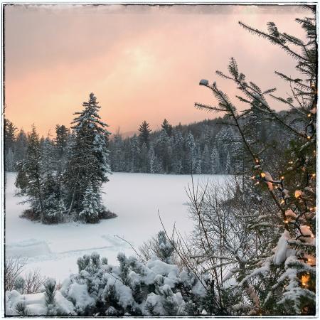 Winterlight full